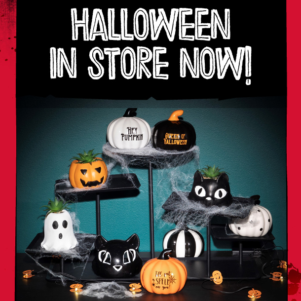 Halloween at home with Poundland